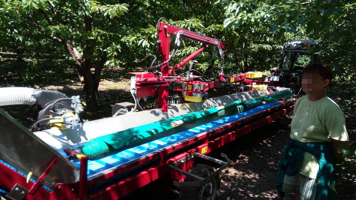 Мтресящи комбайни за беритба на плодовеМеханизирано бране на овошки, бране на овошки с машинаеханизирано бране на овошки, бране на овошки с машина