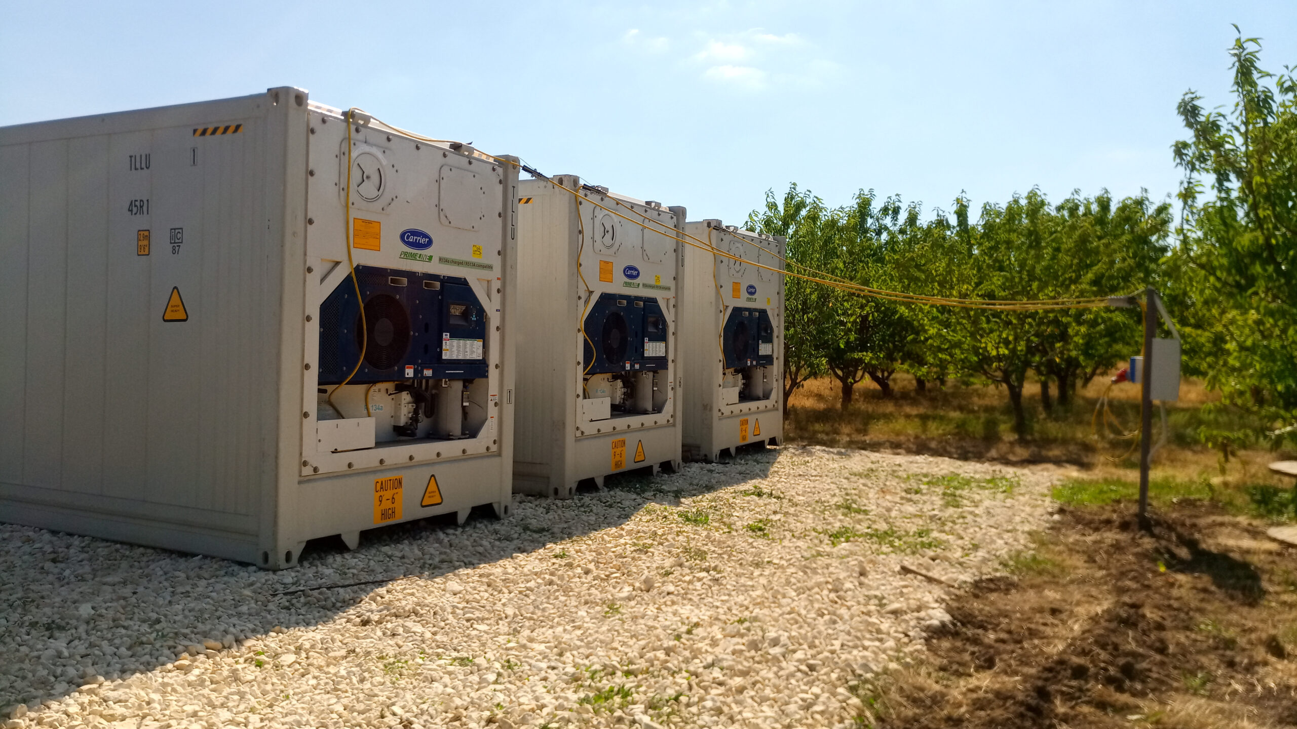 Съхранение на плодове и зеленчуци с помощта на стопанство от хладилни контейнери 2020-08-05 16.13.40