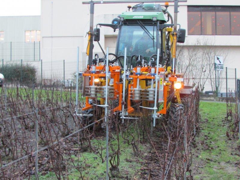 Двойни предрезитбени агрегати за гроздокомбайн CoupEco Viti NAOTEC DIAMANT